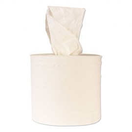 Winsoft® Center Pull 2ply Hand Towels,6RLS/520CT